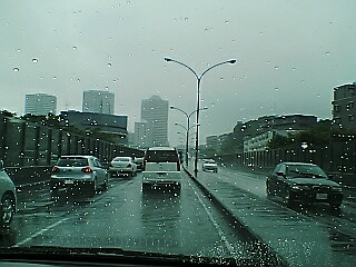 雨です(>_<)